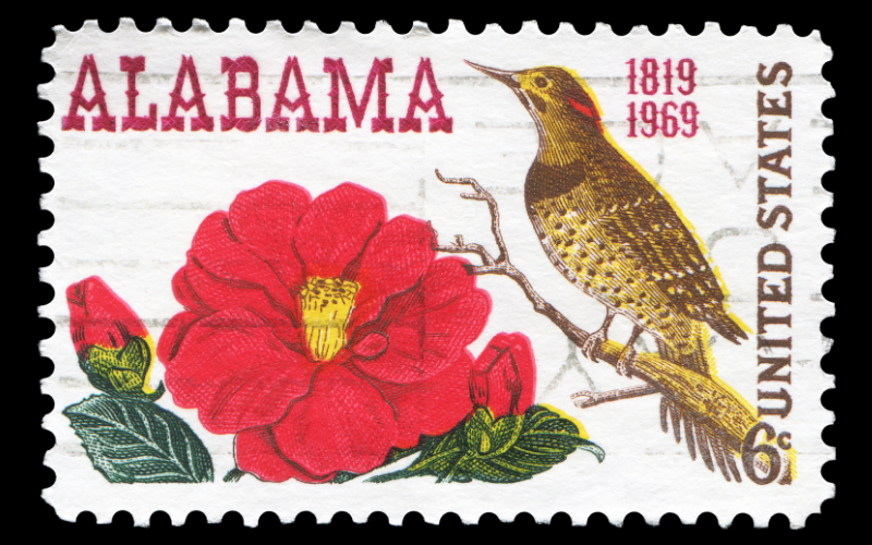 State of Alabama Community Resource Header Image